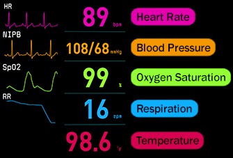 Which Vital Sign is Most Vital to Recognize a Problem and Need to Rescue?