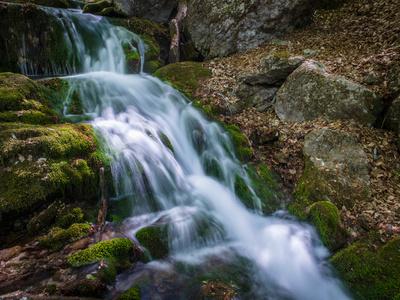 Hap-Hal creek #1